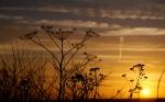 1920x1200_nature_sunset_003
